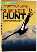Scavenger Hunt - DVD